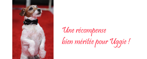 Uggie, star canine The Artist, recompensé lors des colliers d'or