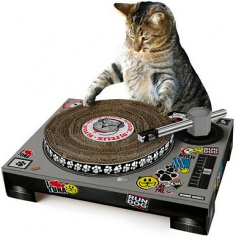 grattoir pour chat en forme de platine DJ - blog Animaute