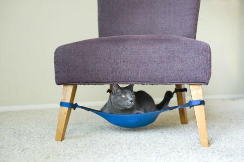 hamac pour chat - blog Animaute