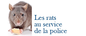 rat police