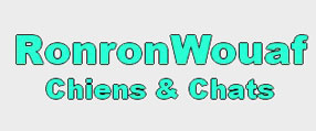 Logo-RonronWouaf-img
