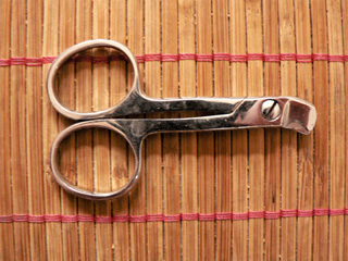 Couper les griffes d un chat infos pratiques chats - Quand peut on couper les griffes d un chaton ...