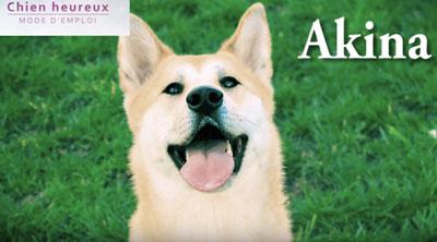 source: chien heureux mode d'emploi